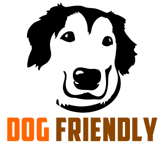 Image result for Dog friendly